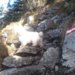 Aufstieg Schoberstein mit Hunden problemlos möglich