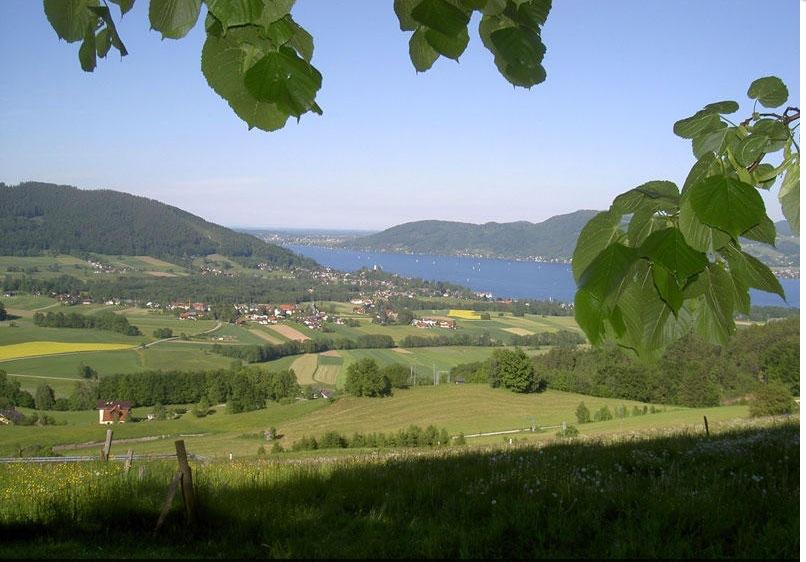 Kronberg im Straß im Attergau